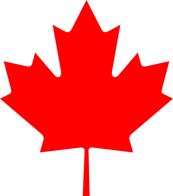 Total_Publicity_Metodos_Pagos_Canada