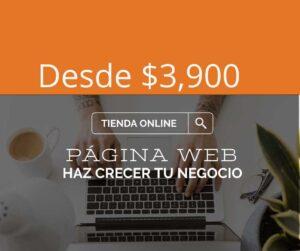 Página Web para Hacer Crecer tu Negocio